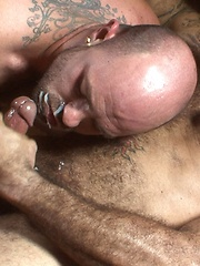 Hot muscle bears Alessio and Rogue do some serious cock-sucking and ass-fucking