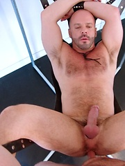 Bald hairy daddies fucking each other