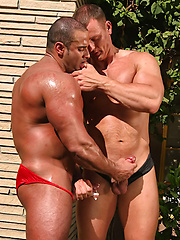 Muscular bodybuilders playing at the pool
